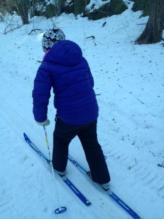 skidor 2